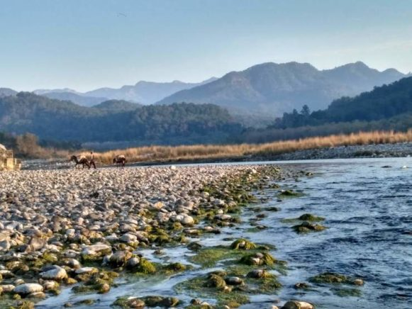 Enjoy a beautiful view of river Kosi in Uttrakhand. The river flows in the foot of mountain. , flowing in the foot of mountain. mountain and river,